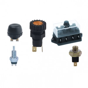TRUCK PARTS & ACCESSORIES - SWITCHES/BUTTONS & FUSE BOX