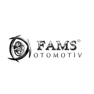 CHROME ACCESSORIES - FAMS